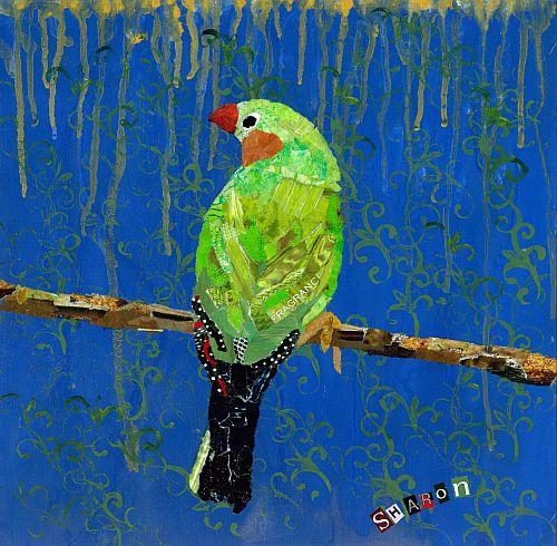 1 green finch